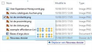 Exemple de drag&drop dans l'explorateur Windows : une miniature de l'élément déplacé suit le mouvement de la souris et une indication au niveau de la destination (highlight + label) est fournie